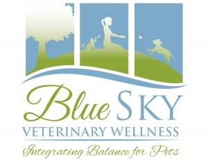 Blue+Sky+Logo-01