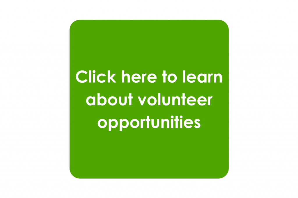 This image has an empty alt attribute; its file name is Volunteer-Opportunities-1024x683.png